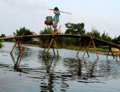 Ho Chi Minh - My Tho - Ben Tre